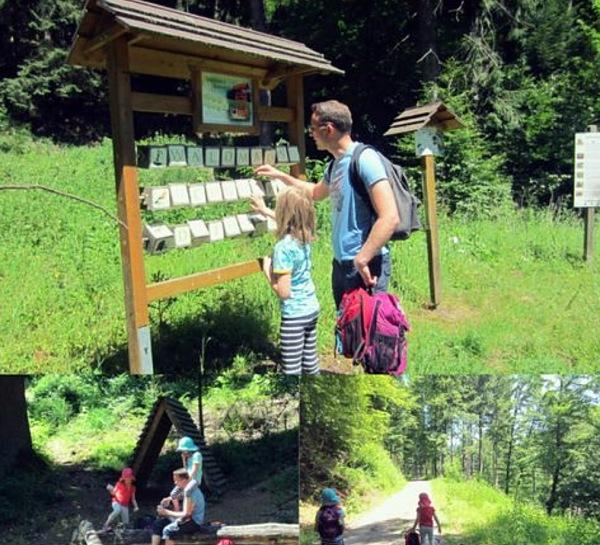 Holzwurmpfad in Calmbach bei Bad Wildbad