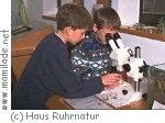 Kindergeburtstag im Haus Ruhrnatur