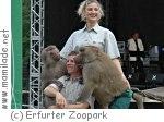 31. Zooparkfest im Thüringer Zoopark Erfurt