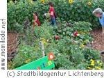 Sonnenblumen-Labyrinth in Berlin Lichtenberg