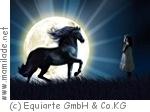 """Apassionata - Die Galanacht der Pferde """"Sehnsucht"""""""