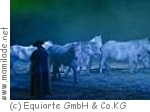 """Apassionata - Die Galanacht der Pferde """"Sehnsucht"""" Leipzig"""