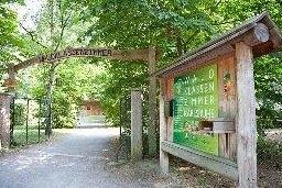 (c) Waldpädagogik Karlsruhe