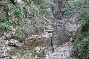 Hörbachschlucht in Murrhardt (c) alex grom