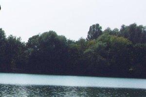 Waldsee in Murrhardt (c) alex grom