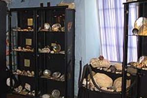 Ausstellungsraum Muschel- und Schnecken-Museum Norden