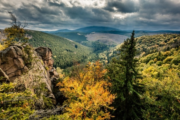 Der Naturpark Harz