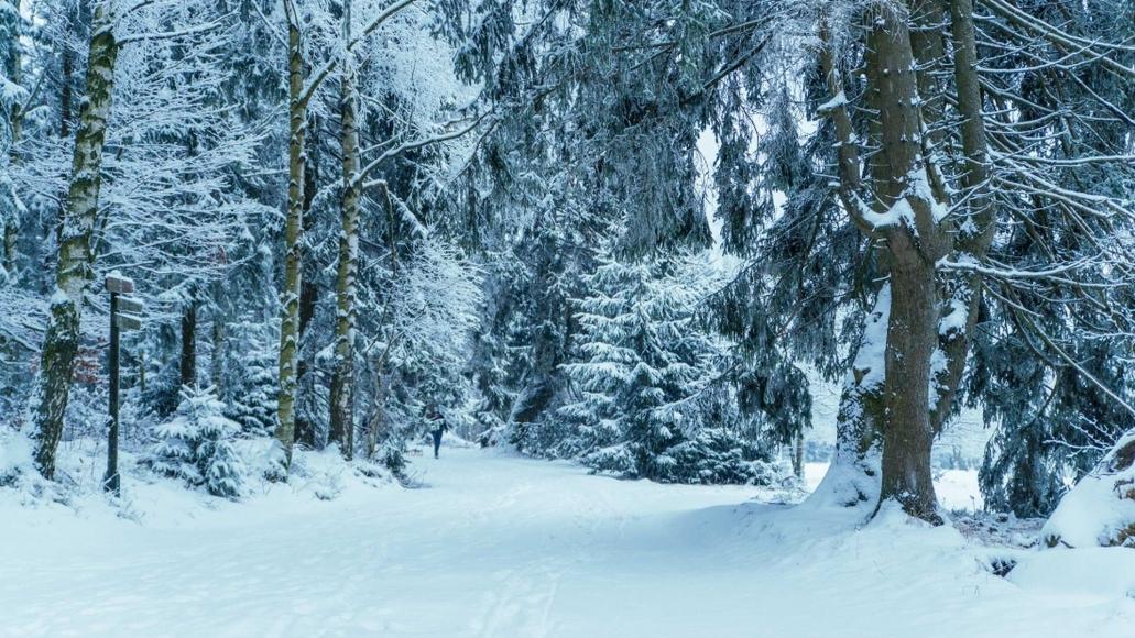 Wintersport im Luftkurort Benneckenstein