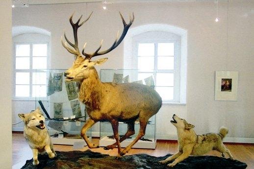 (c) Jagd- und Fischereimuseum Schloss Tambach e.V.