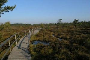 Naturlehrpfad Schwarzes Moor