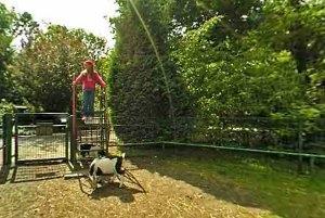 Kindergeburtstag im Tiergarten Staßfurt (c) Tiergarten Staßfurt