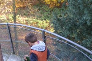 Kind im Herbstwald