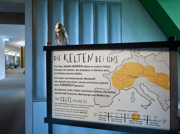 Die Kelten kommen (c) Foto: H. Zwietasch; Landesmuseum Württemberg, Stuttgart