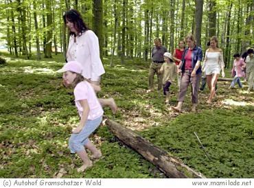 Gramschatzer Wald Barfußpfad