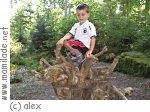 Ökologischer Waldlehrpfad Überherrn