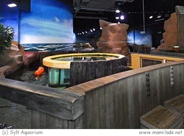 Aquarium Sylt