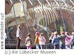 Lübecker Museen Familiensonntag