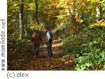 Neunkirchen Kasbruchtal - Historischer Wanderweg