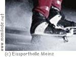 Eissporthalle Mainz