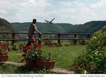 Flugvorführung auf der Reichsburg Cochem