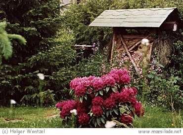 Garten- und Naturlehrpfad Georgenthal