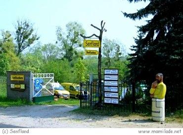 Senfland in Niederfinow