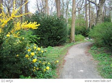 Großer Tiergarten in Berlin