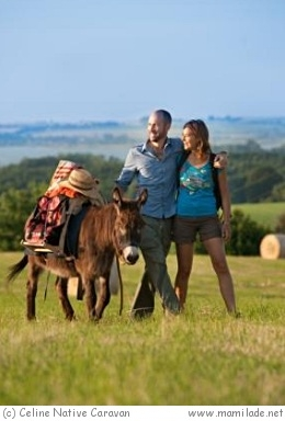 Eselwandern in der Uckermark