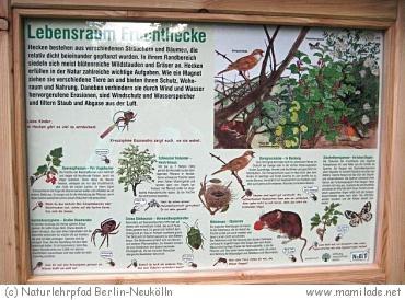 Naturlehrpfad Berlin-Neukölln