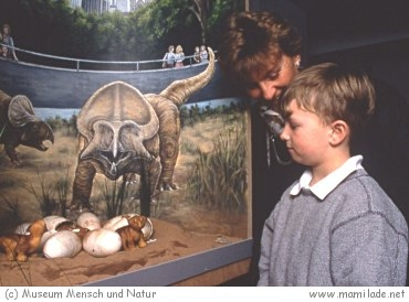 Museum Mensch und Natur in München