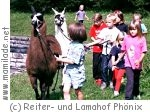 Kinderstunde am Lamahof Phönix