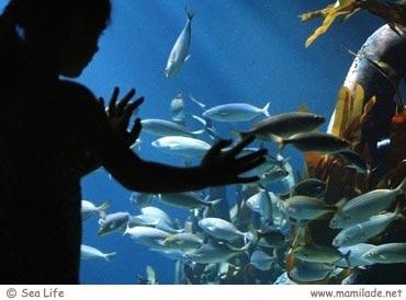 Sea Life Speyer