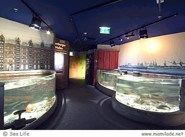 Sea Life Berlin