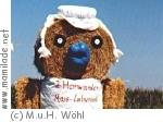 Maislabyrinth in Hamwarde