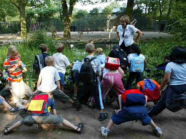 Giraffenschritt beim Kindergeburtstag im Tierpark Hagenbeck in Hamburg
