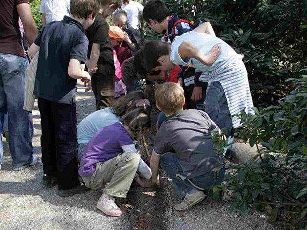 Schlangenhaut tasten beim Kindergeburtstag im Tierpark Hagenbeck in Hamburg