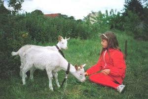 © Kinderbauernhof Pinke-Panke