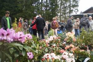 (c) Botanischer Garten Adorf