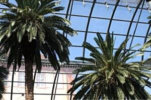 Palmengarten Frankfurt, copyright: Diana