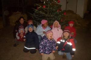 Weihnachten im Stall (c) Harderhof