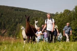Lama-Ranch Pobershau