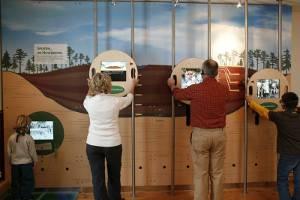 Hochmoorzimmer - Ausstellung im Infozentrum (c) Zweckverband Infozentrum Kaltenbronn