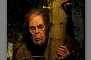Bigfoot im Naturkundemuseum Kassel (c) Naturkundemuseum Kassel