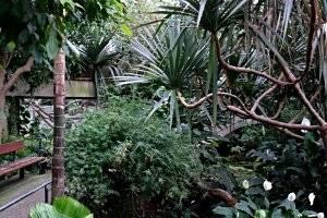 nachtaktiv ein abend im zoo krefeld mamilade ausflugsziele. Black Bedroom Furniture Sets. Home Design Ideas