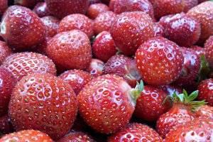 Marmeladenmarkt am Haus der Nachhaltigkeit (c) Adriana