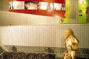 Neanderthalmuseum Mettmann, copyright: Neanderthal Museum, R. Rehfeld