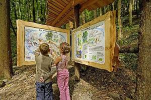 Naturerlebnispfad (c) Tourist-Information Oberharmersbach