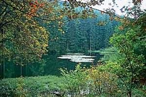 Unterwegs im Naturpark Rothaargebirge (c) Naturpark Rothaargebirge