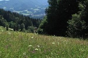 Naturpark Unteres Saaletal (c) Adriana