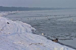Ostsee im Winter, © Antje Griehl